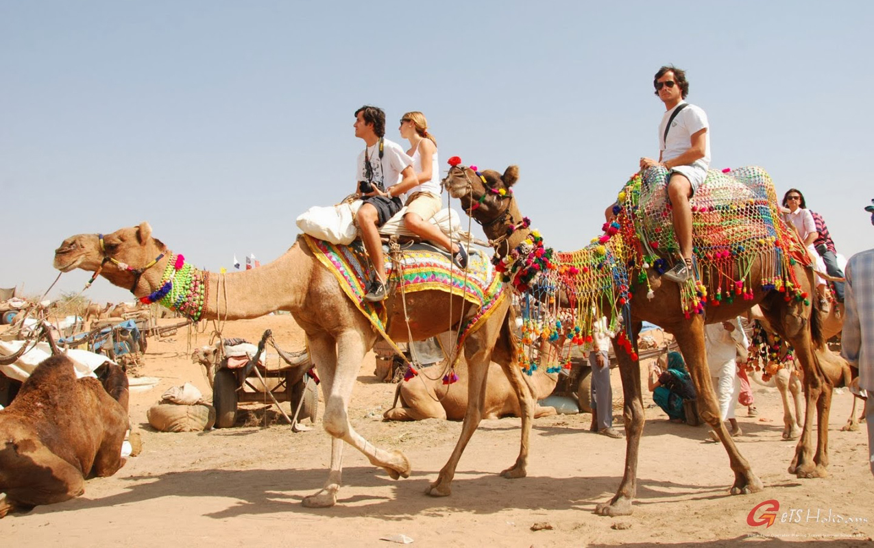 Golden Triangle Tour Packages with Pushkar